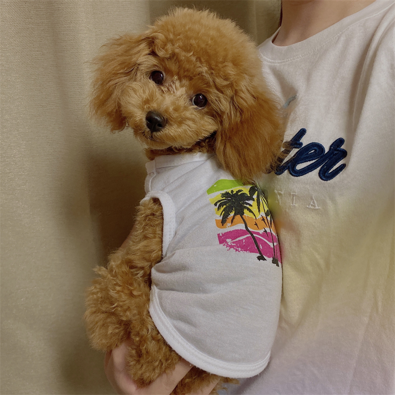 ララアロハTシャツ